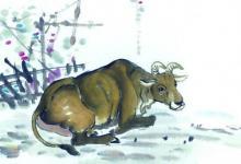 五大年份属牛2020年运势及每月运程