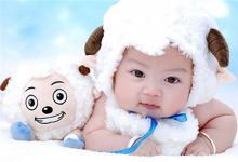 生肖猪小孩起名大全(图文)