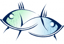 双鱼男在暧昧时期的表现,甜言蜜语最为常见