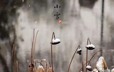 2019年小雪节气出生女孩诗词名句起名唯美气质名字(图文)