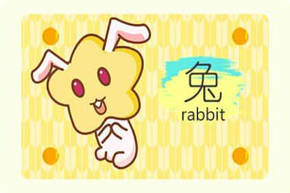 属兔女孩名字有哪些推荐(图文)
