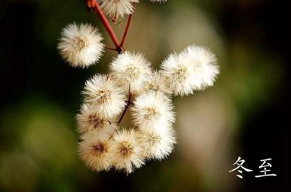 2019年冬至破土修坟吉不吉利,冬至和立冬哪个更冷?(图文)