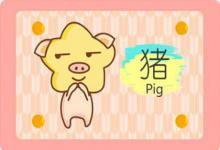 属猪的男孩取名字大全有哪些(图文)