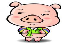 属猪人房子风水宜忌解析,属猪人风水禁忌(图文)