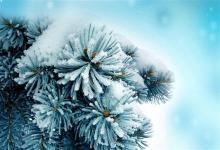 2020年大寒1月20日与属兔人是六合吗 相合生肖是贵人吗?(图文)
