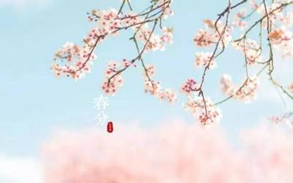 春分节气出生的属猪人命运好吗 春分出生命格解析(图文)