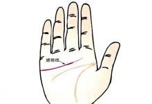 手掌肥厚的婚姻运势非常的美满?手掌厚的人运势如何?(图文)