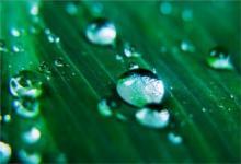 2020年雨水后一天祈福好吗,2020~2030年雨水节气时间表!(图文)