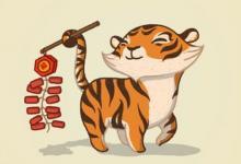 不同年份出生的属虎人今年多少岁? 属虎人今年多大了?