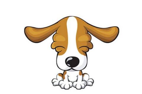 属狗的几月出生最好,命运最好?