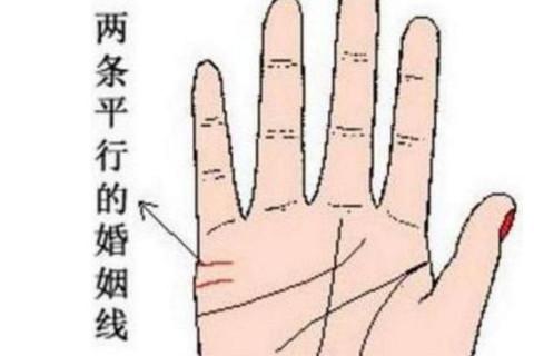 手相分析:你的手上有两条感情线吗,两条感情线代表着什么呢?