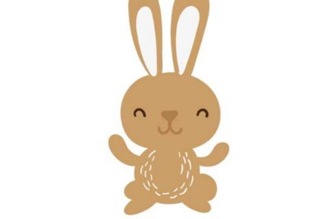 2020年属兔人全年运势,属兔的人命好吗