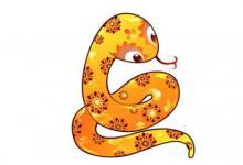 生肖蛇和生肖龙的合财吗?