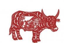 生肖蛇和生肖牛的合财吗?