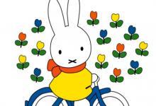 2020年属兔人运程以及运势,属兔人运势怎么样