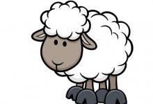 属羊人2020年桃花运好吗,爱情运势怎么样