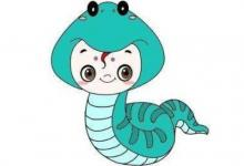 出生于1965年属蛇的人2020年运程大全