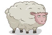 1967年属羊2021年冲太岁怎么化解,,67年生肖羊犯太岁要佩戴什么