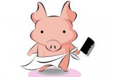 出生于1995年属猪人2021年命运如何  适合佩戴什么吉祥物