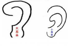 通过耳朵形状判断运势如何