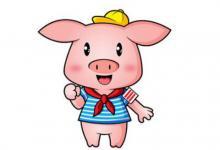 几时出生的属猪人是一等命