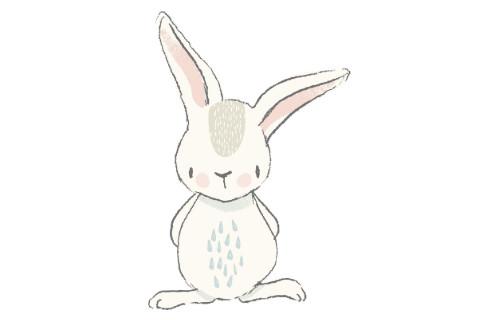 梦见兔子代表了什么意思
