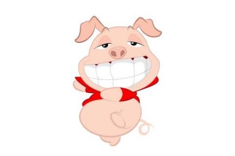 属猪人男孩吉祥的名字宜用字