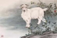 属鸡女和属羊男在一起怎么样 属鸡女的性格如何?(图文)