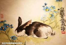 女兔男狗婚姻会美满吗?(图文)