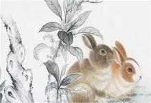 女兔男猴婚姻最终会怎么样?(图文)