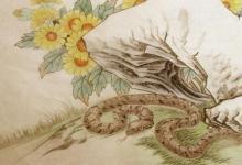 女蛇男兔是几等婚姻?(图文)