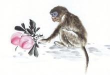 女猪男猴适合婚配吗 性格会不会相冲?(图文)