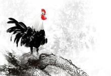 男鸡女龙的婚姻美满吗 属鸡男的性格怎么样?(图文)