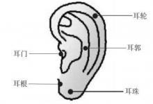 耳朵长痣的男人运势分析