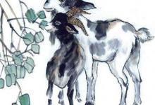 12生肖属羊人2020鼠年农历八月生肖运势怎么样?