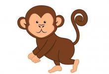 属猴人和属虎人结婚好不好