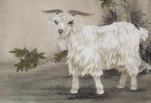 属羊人2020年9月运势分析(图文)
