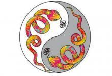 1941年属蛇人2021年命运如何  适合佩戴什么吉祥物