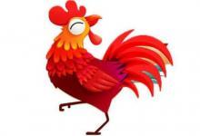 属马人和属鸡人的婚姻如何