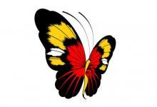 蝴蝶飞进店里有什么寓意