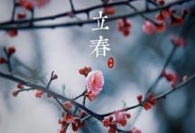 2020年立春2月4日出生的女孩八字缺土起名文雅气质名字(图文)