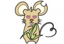 2008年属鼠男女2021年运程  2008年13岁生肖属鼠人2021年运势