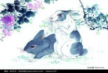男兔女马夫妻运势如何?(图文)