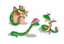 2001年属蛇男女2021年运程  2001年20岁生肖属蛇人2021年运势