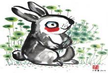 女猪男兔在一起好不好 匹配吗?(图文)