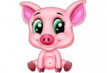 属猪人什么年龄最倒霉