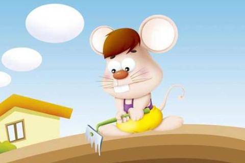 属鼠人2020年11月份整体运势