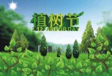 2020年植树节出生的鼠宝宝小名 宝宝乳名取名大全(图文)