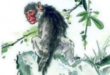 属猴人2020年10月运势运程分析(图文)