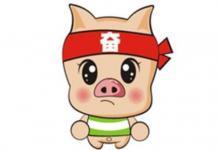 属猪人2021年运势以及运程  2021年属猪人适合佩戴什么吉祥物